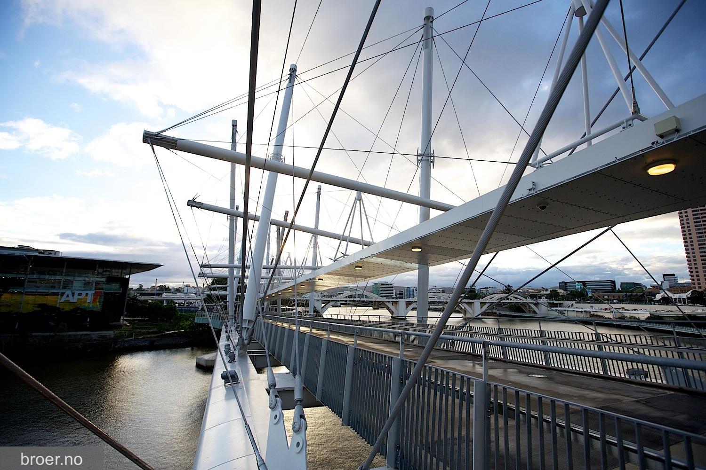 photo of Kurilpa Bridge