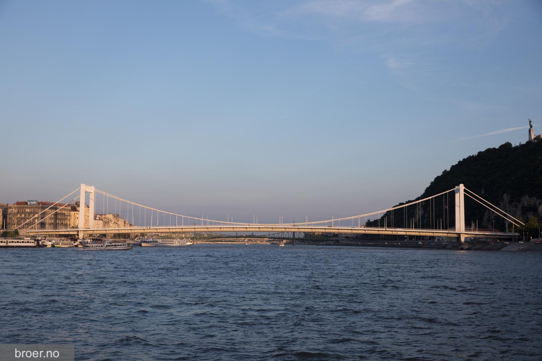 photo of Elisabeth Bridge