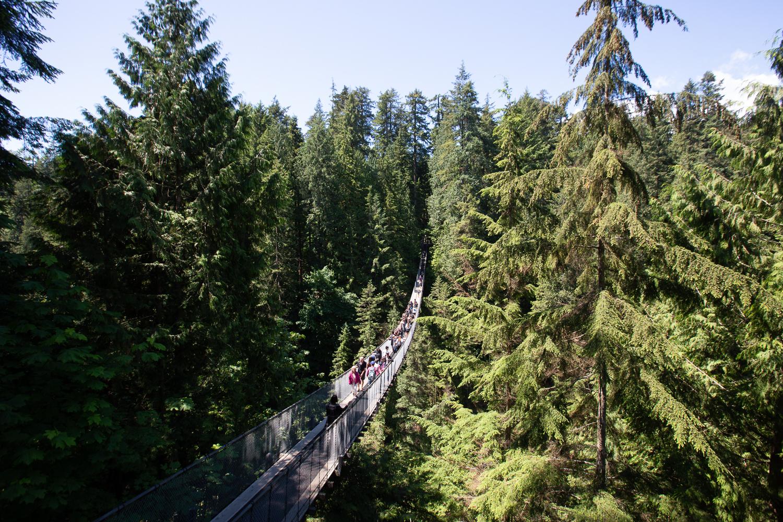 photo of Capilano Suspension Bridge