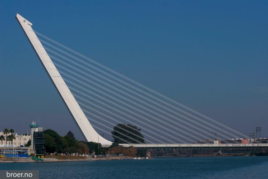 photo of Alamillo bridge