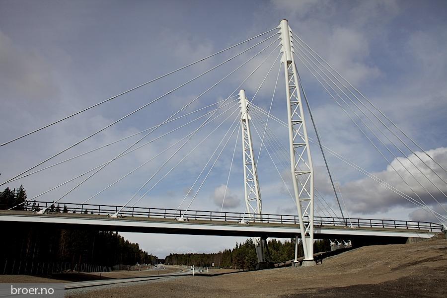 photo of Kolomoen Bridge
